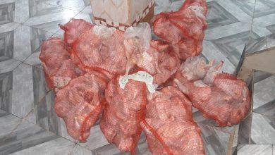 Photo de Police à Skikda: Saisie de 113 kg de volaille congelée impropre à la consommation