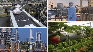 Photo de Développement régional: la réussite par l'Entreprise